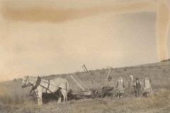 II wojna światowa, Żniwa 1944 r.