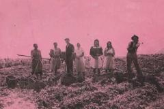 Wykopki ziemniaków ok. 1944 r.